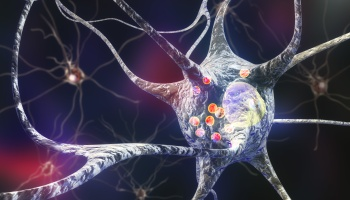 An Enzyme May be the Key to Stopping Parkinson's